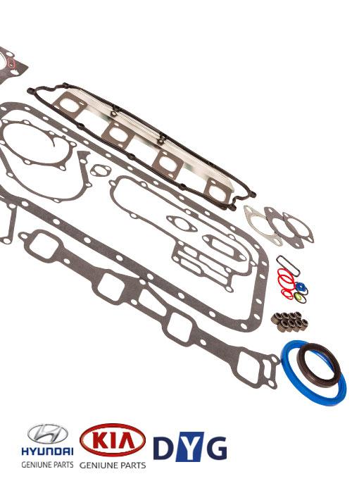 Overhaul-Kit